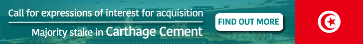 Call of expressions of interest for acquisition of majority stake in Carthage Cement