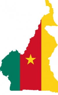 Cameroon exports nearly triple
