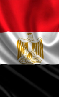 Companies reluctant to invest in Egyptian cement industry